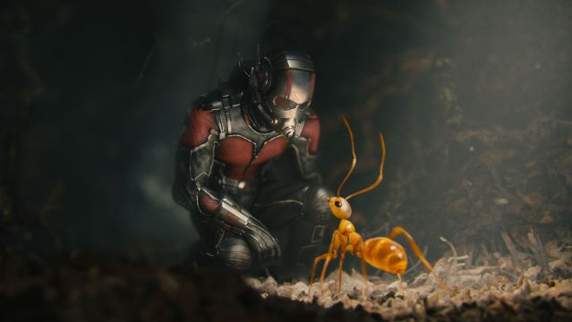 Ant-Man and his friend ant.jpg