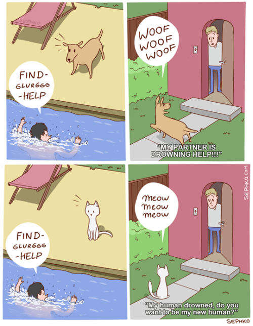 helping dogs vs helping cats.png