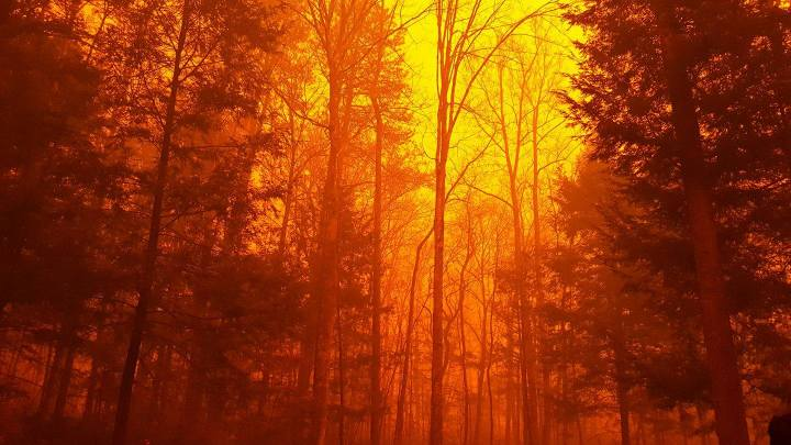 2016 Great Smokey Mountain Fire.jpg