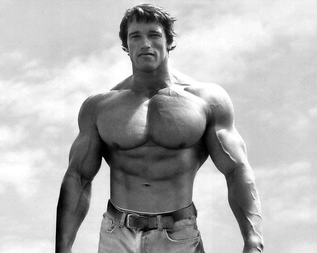 bodybuilder-3.jpg (97 KB)