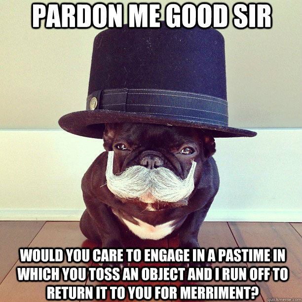 pardon-me-good-sir-dog-pastime.jpg (108 KB)