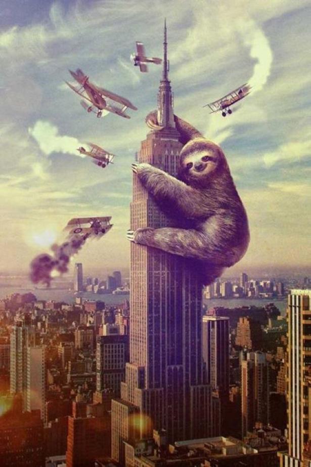 sloths-party-016-02282013.jpg (352 KB)