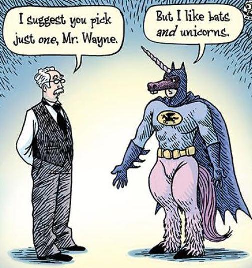 funny-Batman-unicorn-costume.jpg (83 KB)