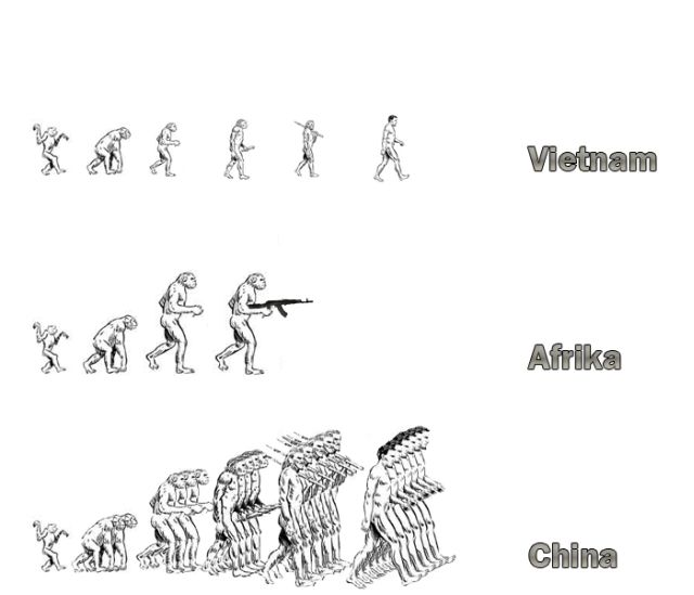 evolution_03.jpg (35 KB)