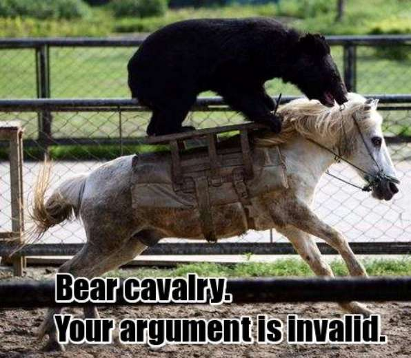 bearcav2.jpg (60 KB)