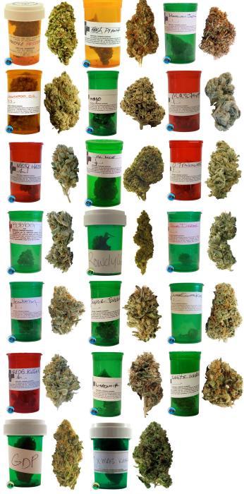 weed.jpg (525 KB)