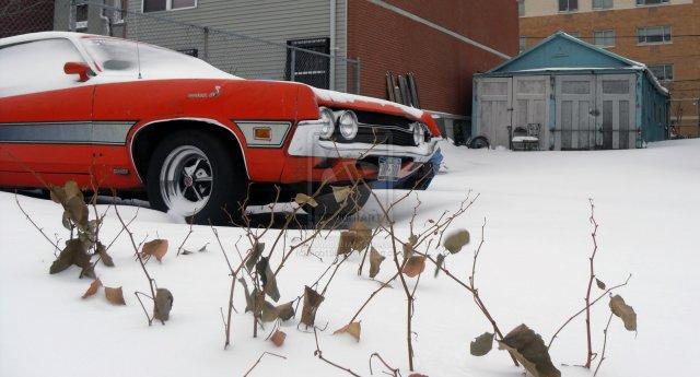 Ford_Torino_Cobra_429_by_Rob1989.jpg (257 KB)