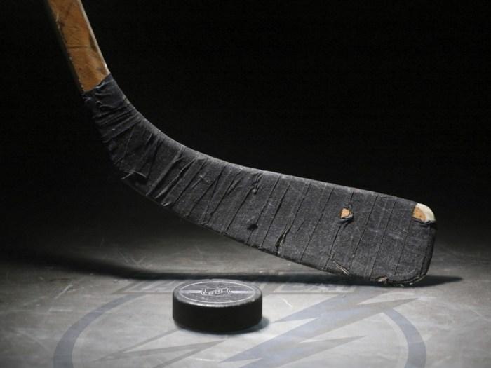 Sport_Hockey_Hockey_Stick_and_Puck_019807_.jpg (131 KB)