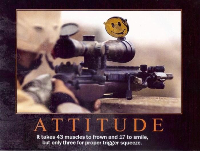 Attitude.jpg (556 KB)