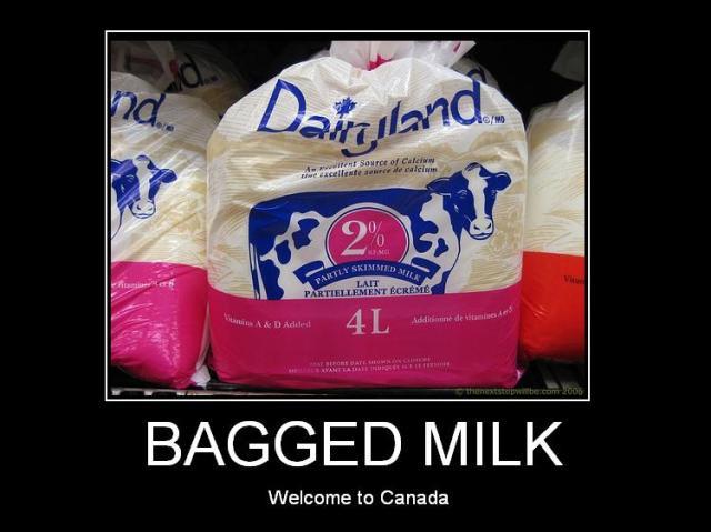 bagged-milk.jpg (57 KB)