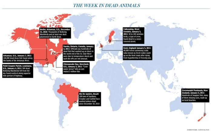 imagesweek-in-dead-animals.jpg (373 KB)
