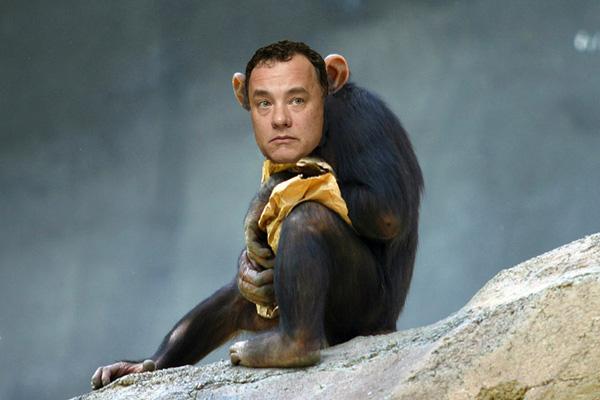 chimpyhank.jpg (75 KB)