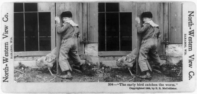 Early_bird_stereograph.jpg (54 KB)