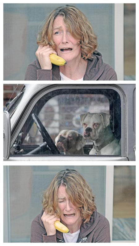 banana-dogs.jpg (98 KB)