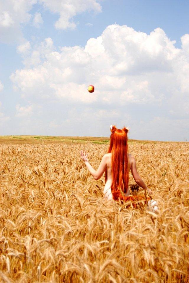 wheatfield.jpg (143 KB)