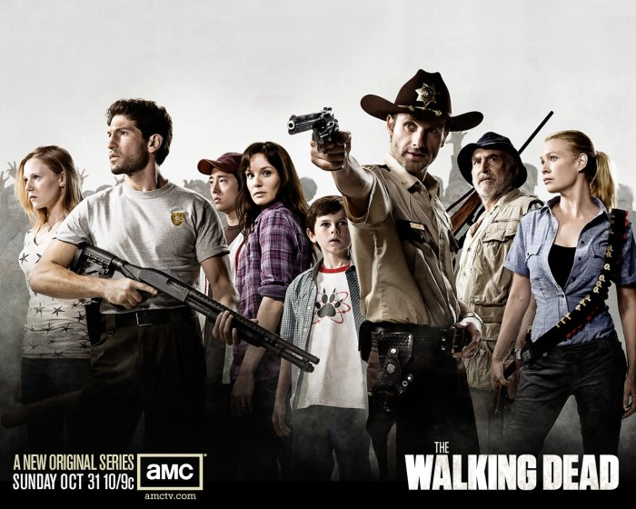 Best-top-desktop-tv-series-wallpapers-The-Walking-Dead11.jpg (381 KB)