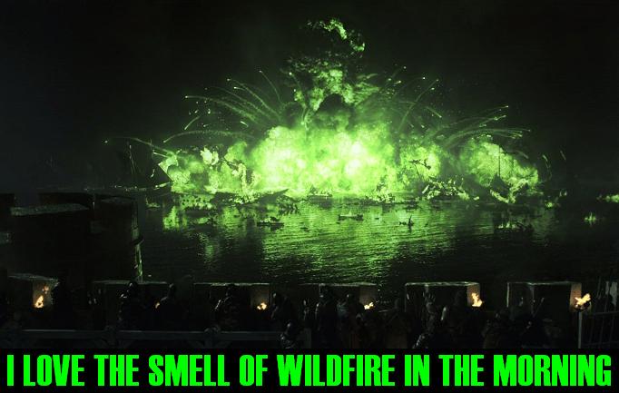 wildfireinthemorning.PNG (507 KB)