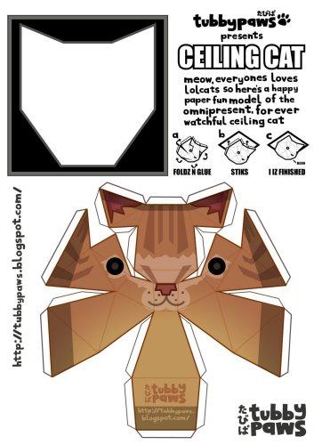ceiling_cat.jpg (198 KB)