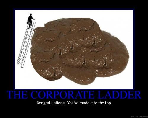 teh_corp_ladder2.JPG (78 KB)