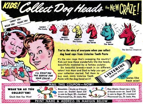 collectdogheads.jpg (289 KB)