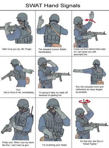 swat.jpg (115 KB)