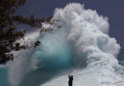 hawaii_pic.jpg (590 KB)
