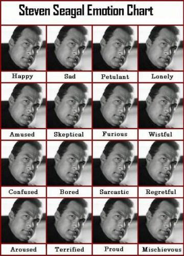 f-Steven-Seagal-Emotion-Chart-4083.jpg (300 KB)