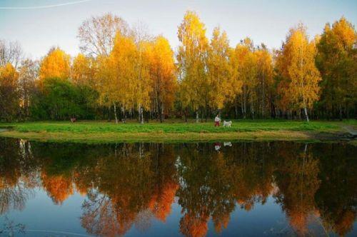 autumn_11.jpg (67 KB)