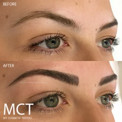 Eyebrow 3D Feather Touch Tattoo