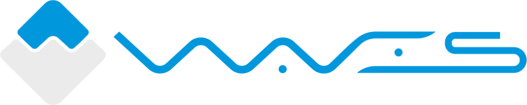 An image of the WAVES logo to represent article: Waves Platform Explained.