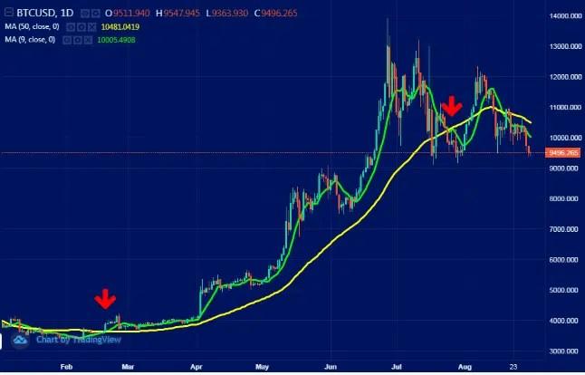 cele mai bune indicatoare bitcoin