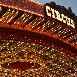 circus-theater-voorstelingen-festival