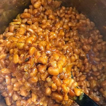 A scoop on instant pot brown beans