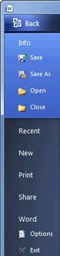 Office 2010 Options