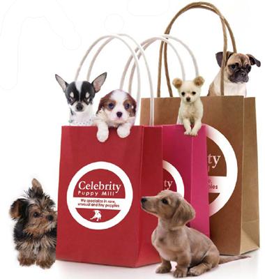 Celebrity Puppy Farm