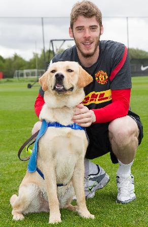 Titan Manchester Utd Guide Dog