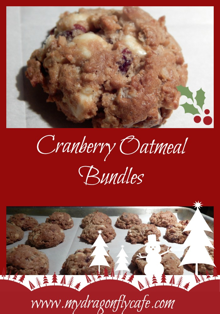 Cranberry Oatmeal Bundles