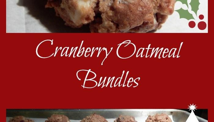 Cranberry Oatmeal Bundles