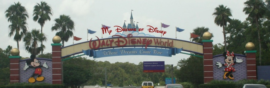 Different My Dreams of Disney Views!