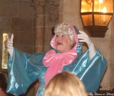 My Dreams of Disney, Disney In Pictures, Fairy Godmother, Cinderella Castle
