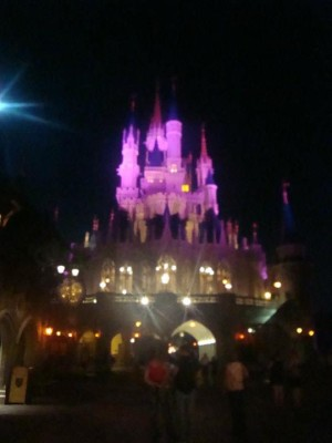My Dreams of Disney, Disney In Pictures, Cinderella Castle, Magic Kingdom