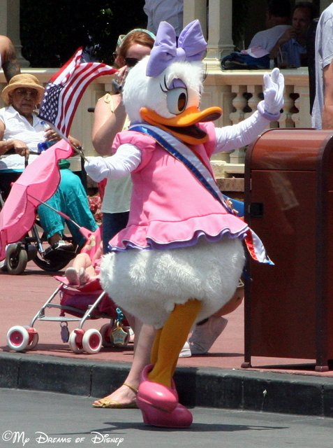 This Sassy Duck is full of spunk and vigor, and is also the Queen of Donald's Heart!