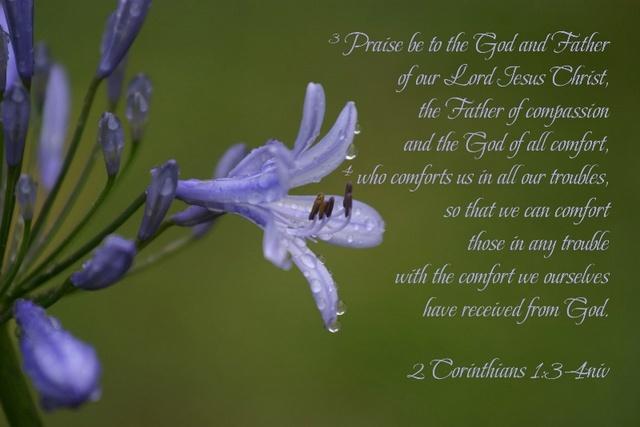 2Corinthians 1:3-4
