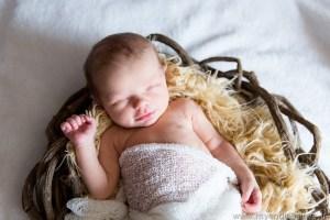 Photographe bébé wissembourg photos bébé photos famille haguenau photographe wissembourg
