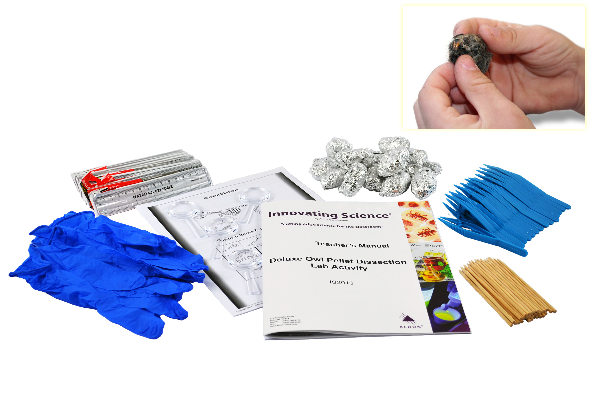 Deluxe Owl Pellet Dissection Lab Activity My Esteam Kits