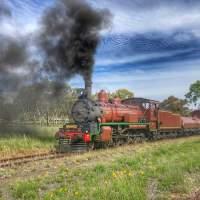 Granite Belt - Steam Train Winerie Tour