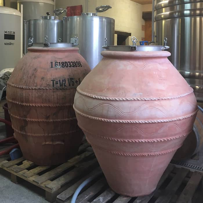 Loire Valley - Chinon - Wine Tasting Amphora