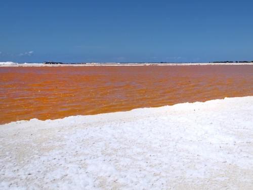 Rio Lagartos - Pink Lake