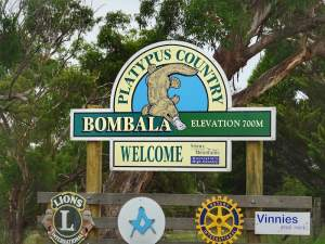 Bombala Platypus Country - See platypus in the wild