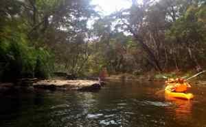 Royal National Park Kayaking
